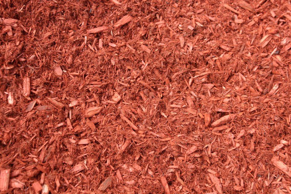 Enhanced Red Cedar