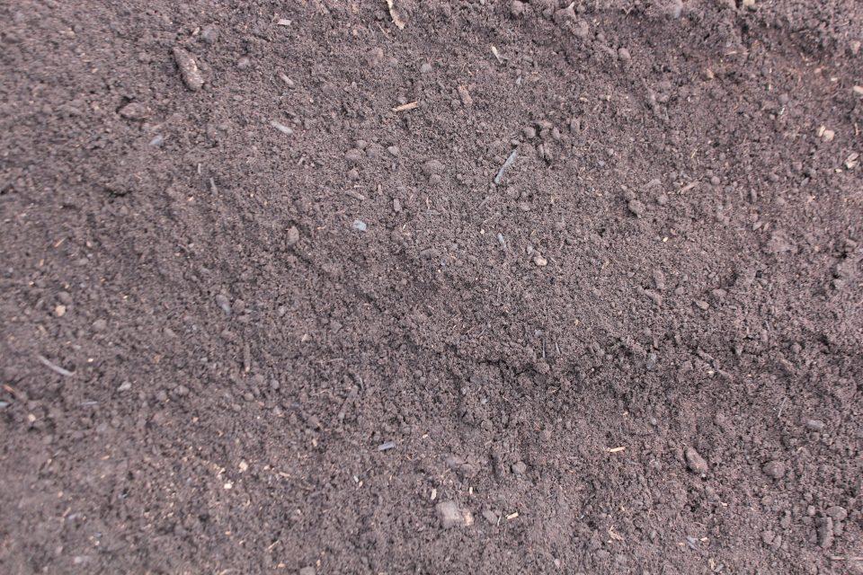Black Peat Loam