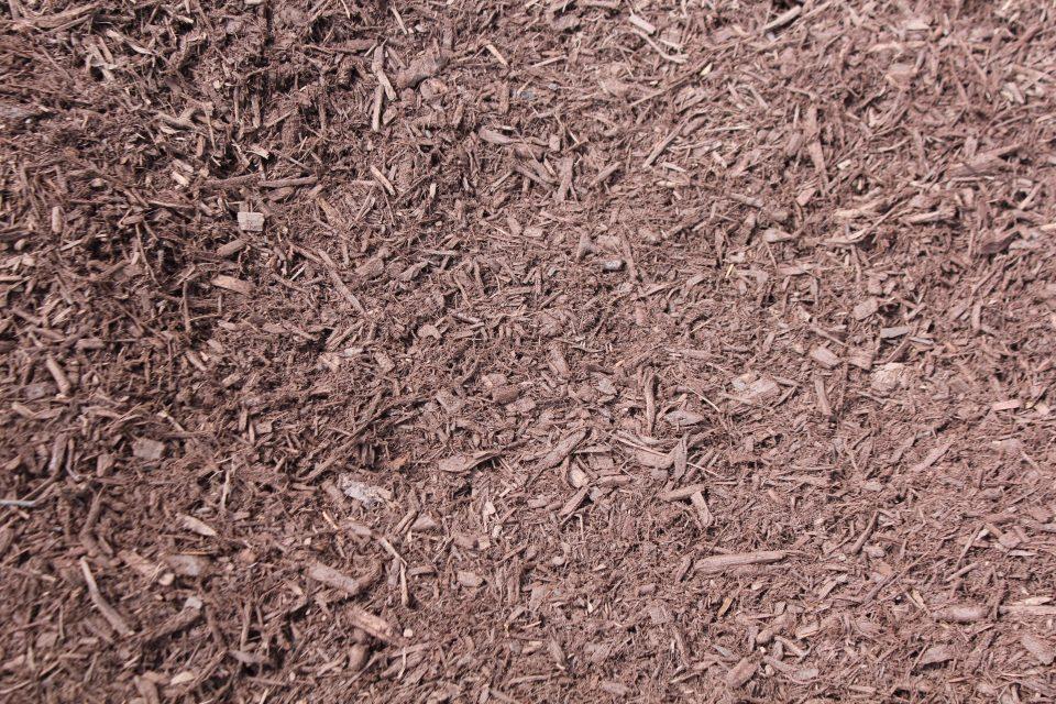 Enhanced Chocolate Bark